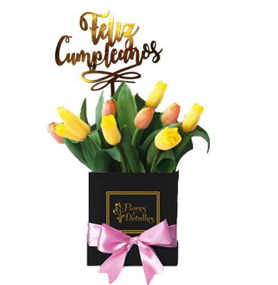 Box 10 Tulipanes Mixtos 10
