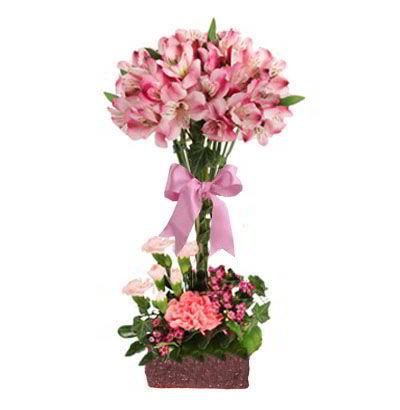 Arreglos para Cumpleaos Flores y Detalles